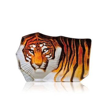 TIGER (LITEN)