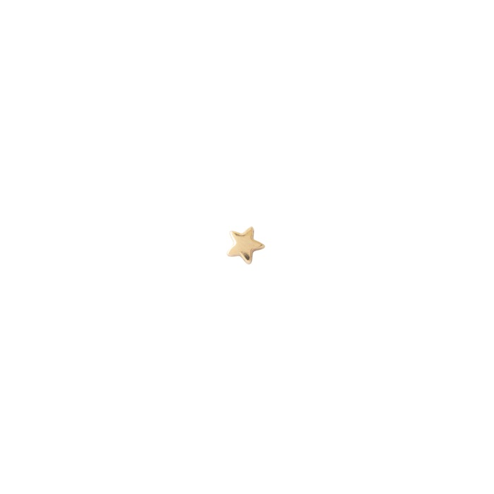 Star Sterling Silver Gold-Plated Earring
