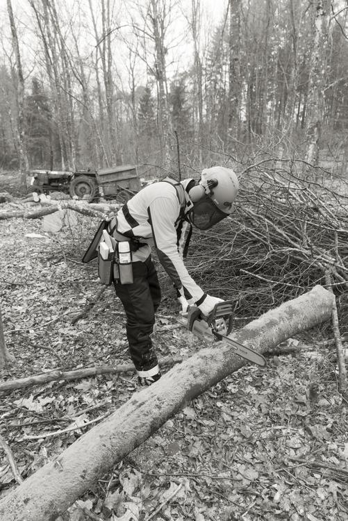 Yukon+ Midjebyxor med sågskydd - OREGON