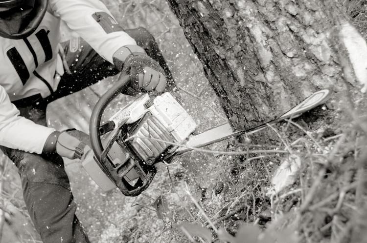 Handskar med sågskydd - Fiordland®, vinter - OREGON