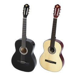 RockOn Akustisk Gitarr