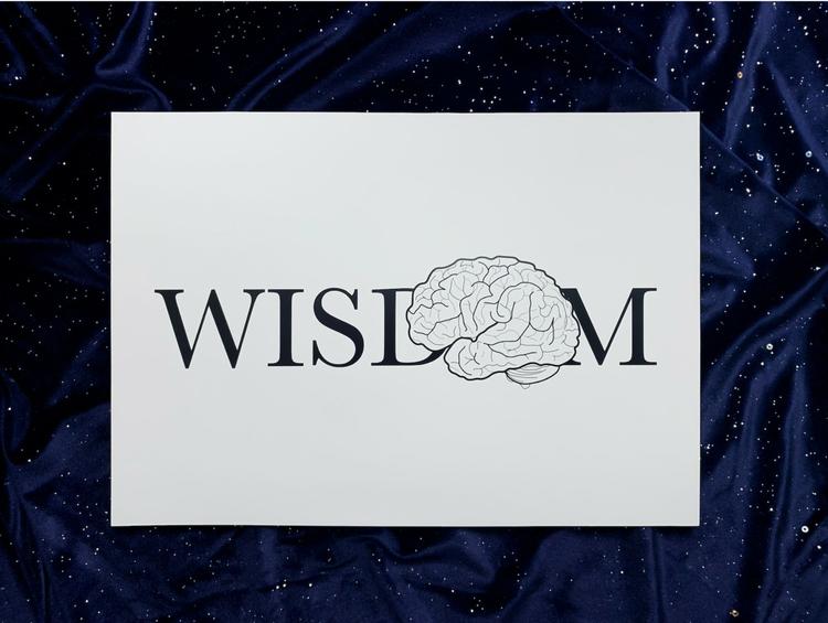 Wisdom illustrasjon