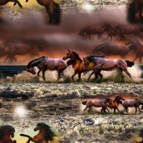 Hästar i galopp (Eco)