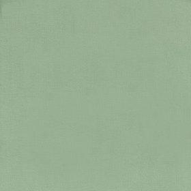 Salvia grön