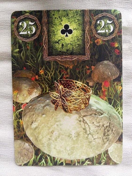 Fairy Lenormand Oracle  av Markus Catz, Tali Goodwin
