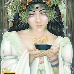 Dreams of Gaia Tarot  A Tarot for a New Era by Ravynne Phelan