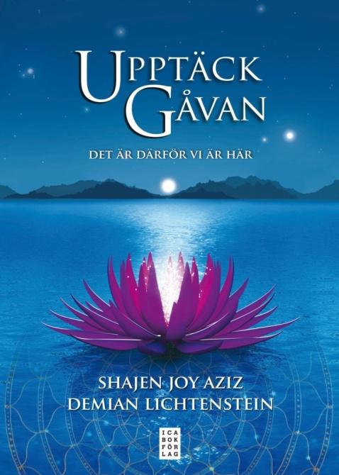 Upptäck gåvan: Det är därför vi är här av Demian Lichtenstein, Shajen Joy Aziz