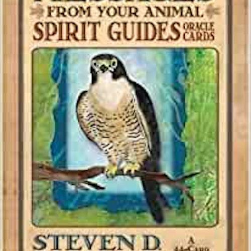 Messages From Your Animal Spirit Guides Cards  av Steven Farmer