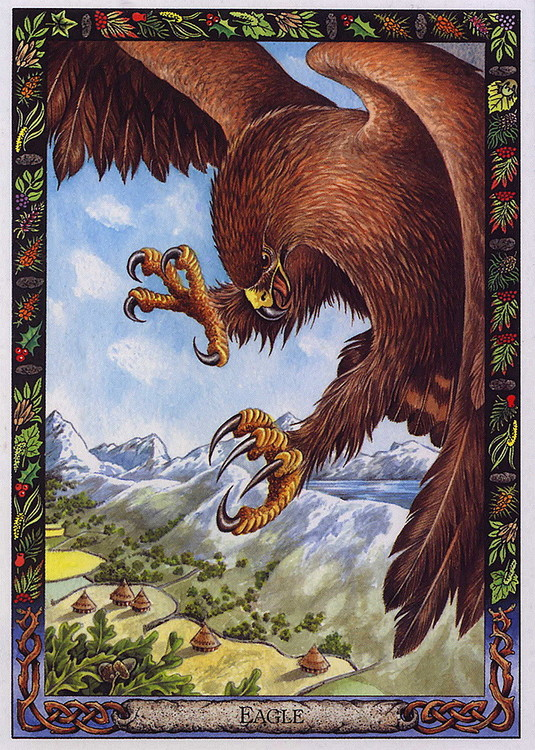The Druid Animal Oracle Deck by Philip & Stephanie Carr-Gomm Illustrated by Will Worthington