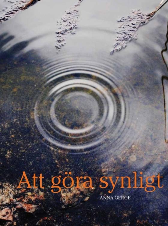 Att göra synligt av Anna Gerge