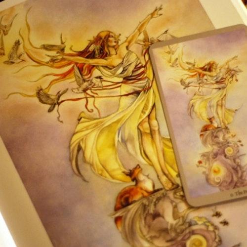 Shadowscapes Tarot  by Stephanie Pui-Mun Law