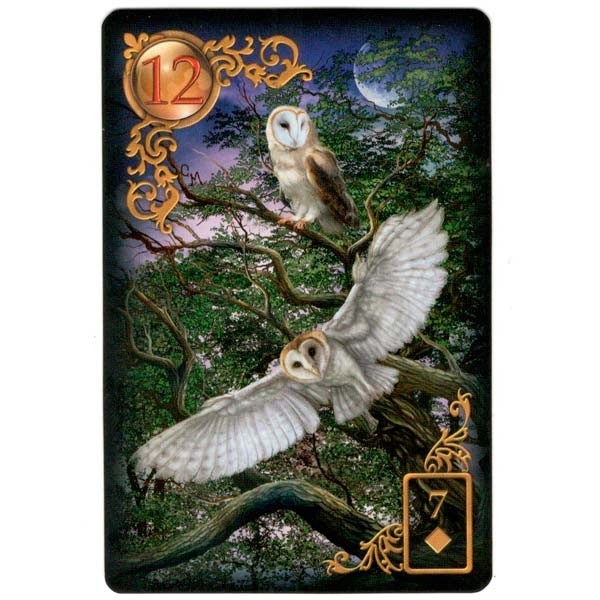 Gilded Reverie Lenormand in English