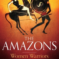 A Brief History of the Amazons: Women Warriors in Myth and History by Lyn Webster Wilde