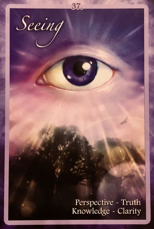 Chakra Insight Oracle 9781572818569 by Caryn Sangster