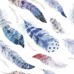 BLÅTT-5 Fjädrar i akvarell