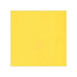 582005-10 st Cardstock Linnestruktur Ochra