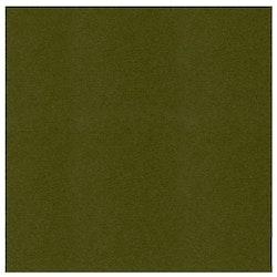 582055-10 Cardstock Linnestruktur Pine Green