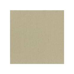 582053-10 st Cardstock Linnestruktur Taupe