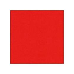 582013- Cardstock Linnestruktur röd