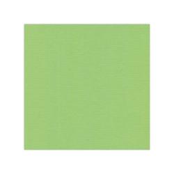 582021-10 Cardstock Linnestruktur Vår grön