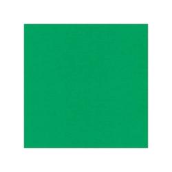 582022-10 Cardstock Linnestruktur Grön