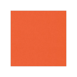 582011-10 st Cardstock Linnestruktur Orange
