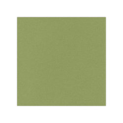 582046-10 st Cardstock Linnestruktur Olivgrön