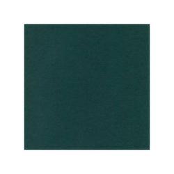 582047-10 st Cardstock Linnestruktur Jade