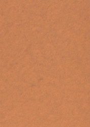 558733-5 Ark metallic alchemy Copper