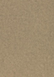 558735-5 Ark metallic alchemy Titanium