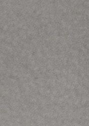 558736-5 Arkmetallic alchemy-platinum