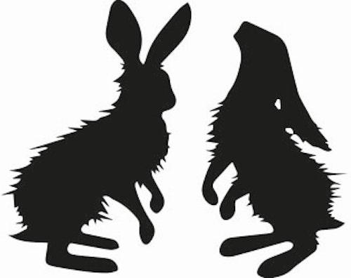 1305 - 2 st mellan harar