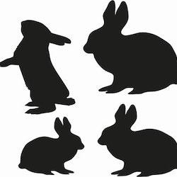 1321 -   4 st olika harar