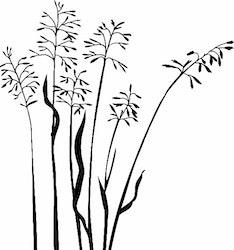1416-Gummistämpel Grässtrån