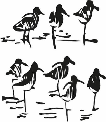 1477-Gummistämpel Sjöfåglar