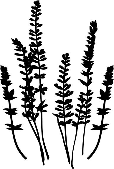 1457-Gummistämpel Lavendel