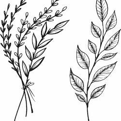 1486-Gummistämpel 2 st  Växtmotiv