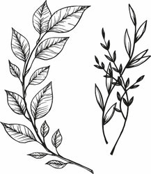 1487-Gummistämpel 2 st  Växtmotiv