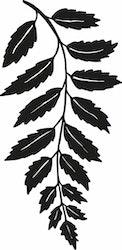 14102-Gummistämpel   Växtmotiv blad