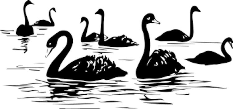 1517-Gummistämpel minis svanar