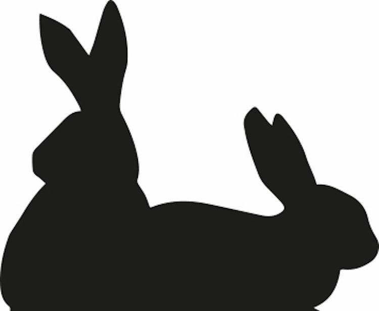 1618 - Gummistämpel  Kaniner silhouette
