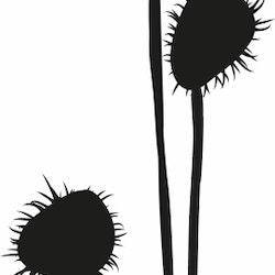 1420-Gummistämpel   Växtmotiv Bollar