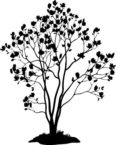 1447 - Gummistämpel Magnolia Träd