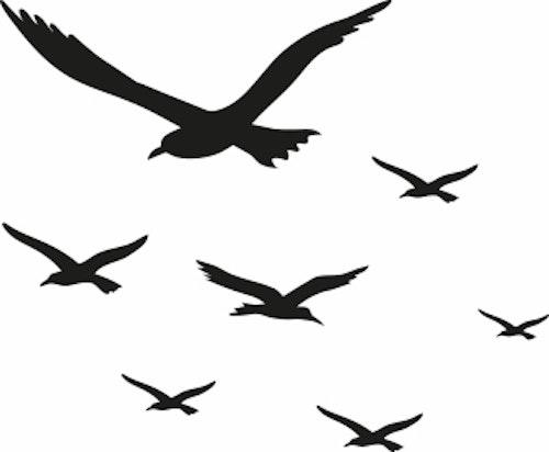 1549-Gummistämpel Flygande Fiskmåsar