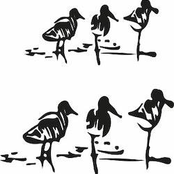 1561-Gummistämpel Minis Stranfåglar i 2 storlekar