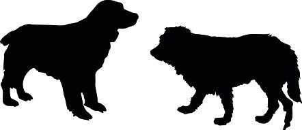 545-Gummistämpel Hundar