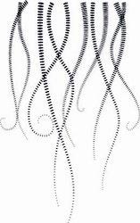 1578-Gummistämpel Minis Swirl Bakgrundsstämpel