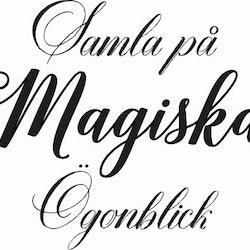 889-Gummistämpel Samla på Magiska ögonblick