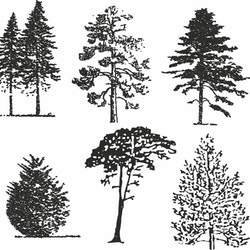 14121-Gummistämpel 6 st olika  Träd