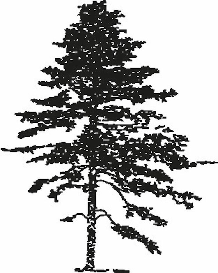 570- Gummistämpel Träd